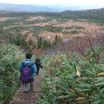 八甲田山 紅葉の湿原と子連れ登山