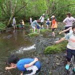 子どもと楽しむ川遊び